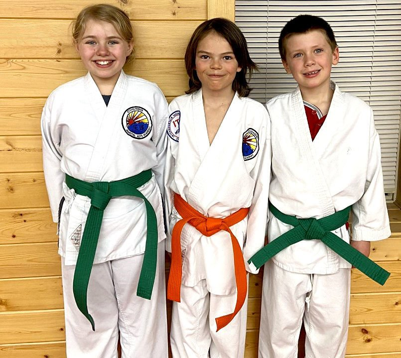Martial arts students advance