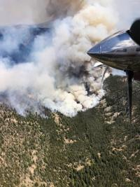 Rabbit Foot Fire grows rapidly