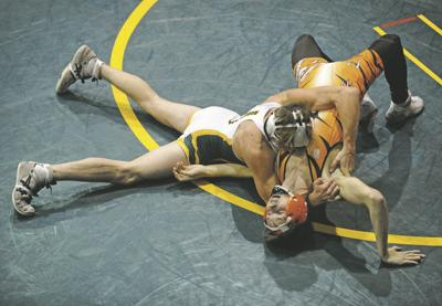 Bees targeted at HCC duals, and that's fine by them