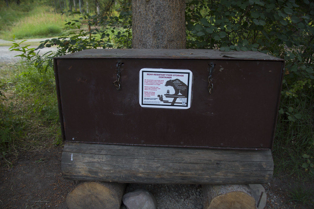Bear-proof containers required in Sawtooth Forest