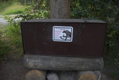 bear storage box