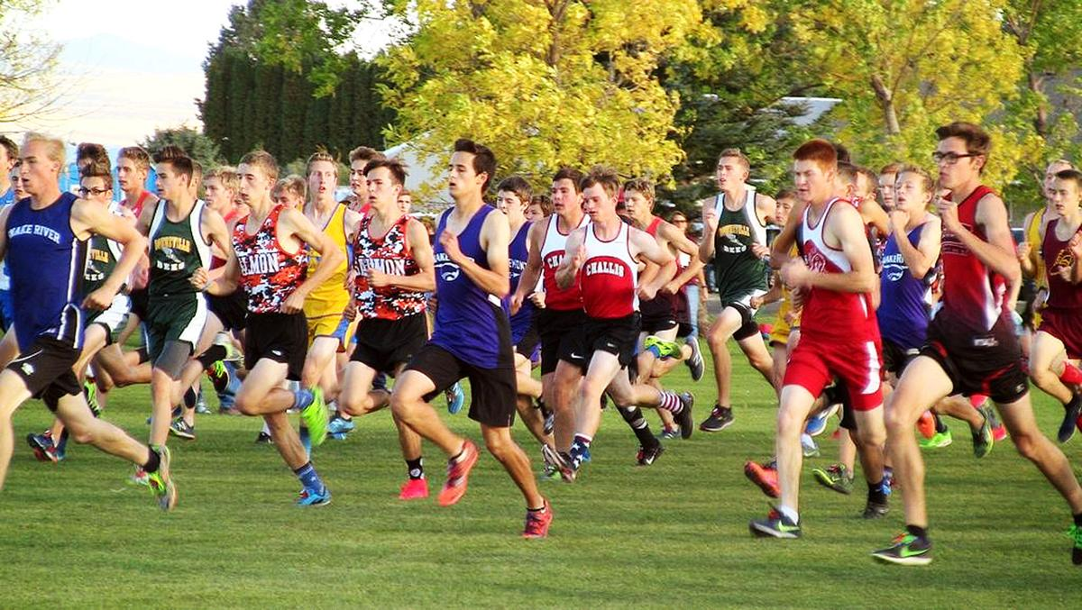 Cross country runners near season's end