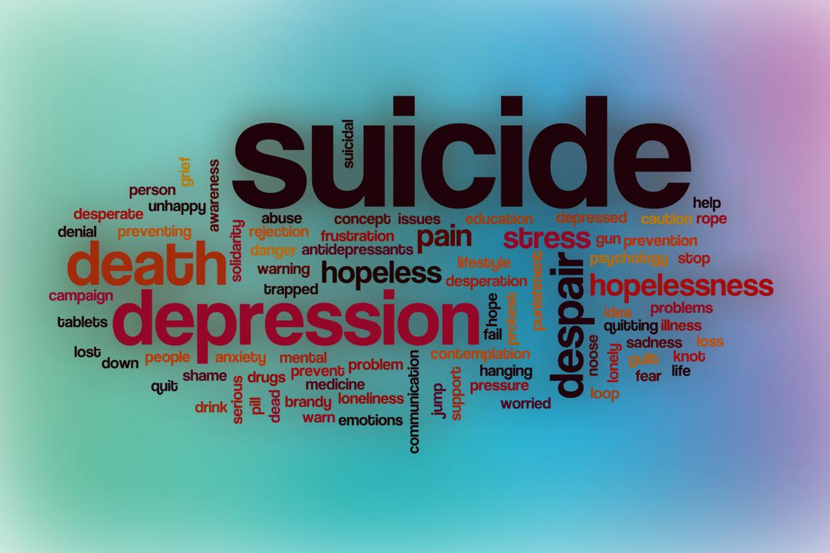 Idaho suicide rate rises in 2017 | Local News | postregister com