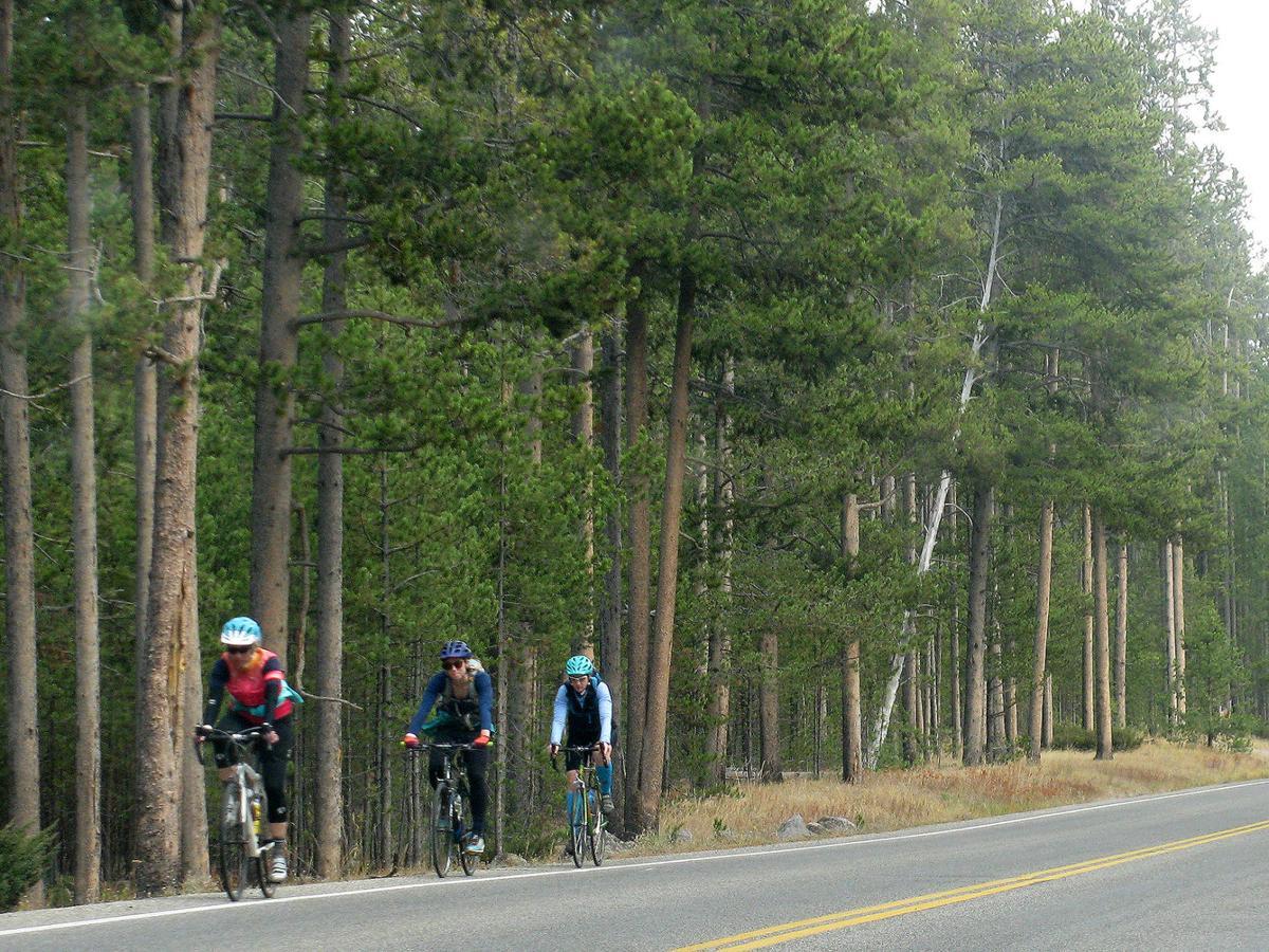 Cycle Yellowstone