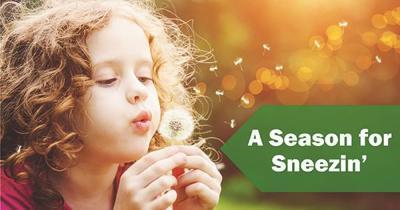 Sneezin season