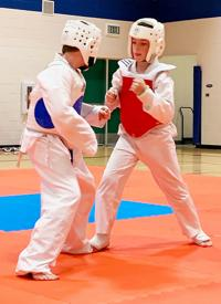 Stanley athlete wins gold in tae kwon do