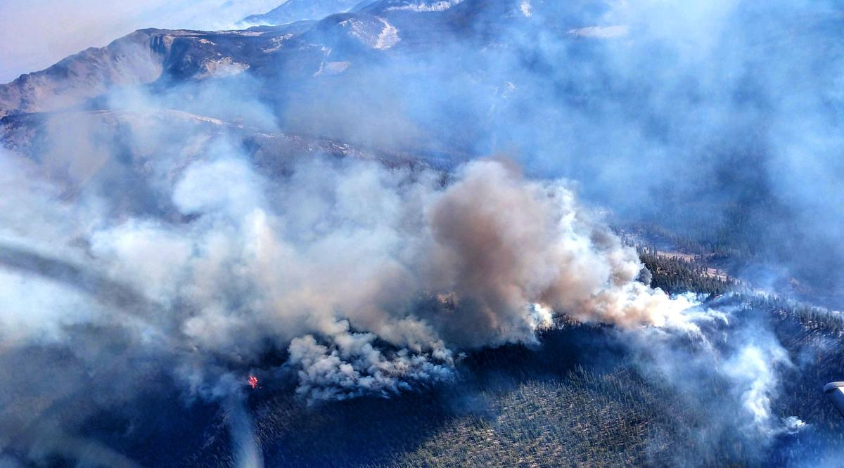 Rabbit Foot Fire handed off to local forest