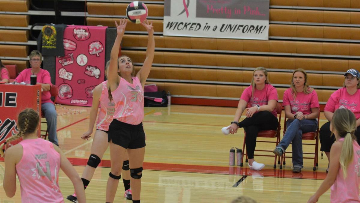 volleyball d'orazio 10.2.jpg