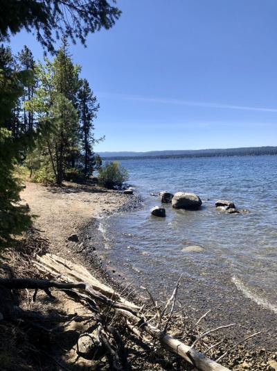 Payette lake shoreline !