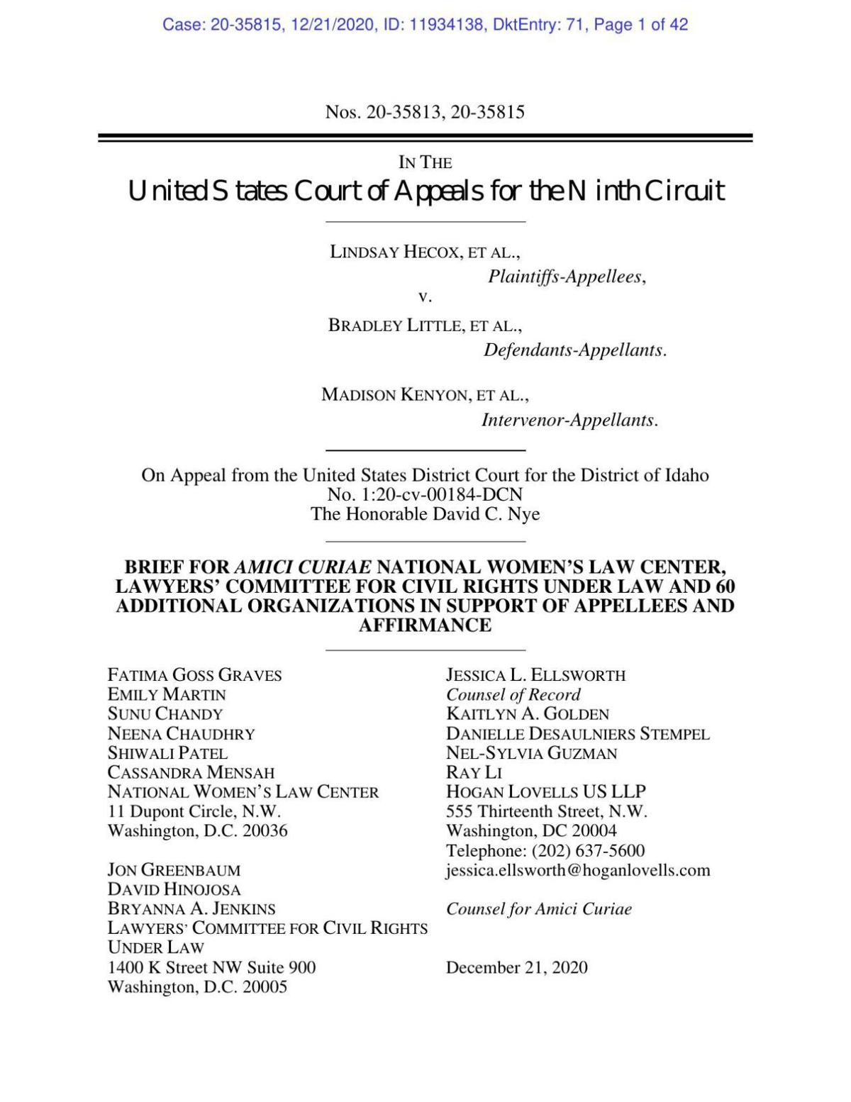 Amicus brief, various civil rights groups