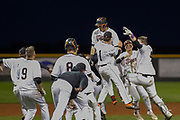 Idaho Falls baseball celebration