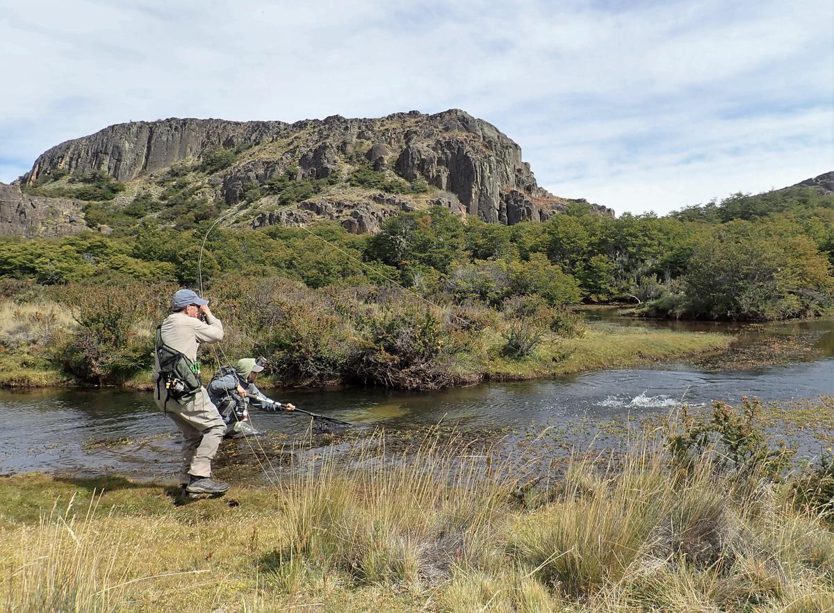 patagonia catch