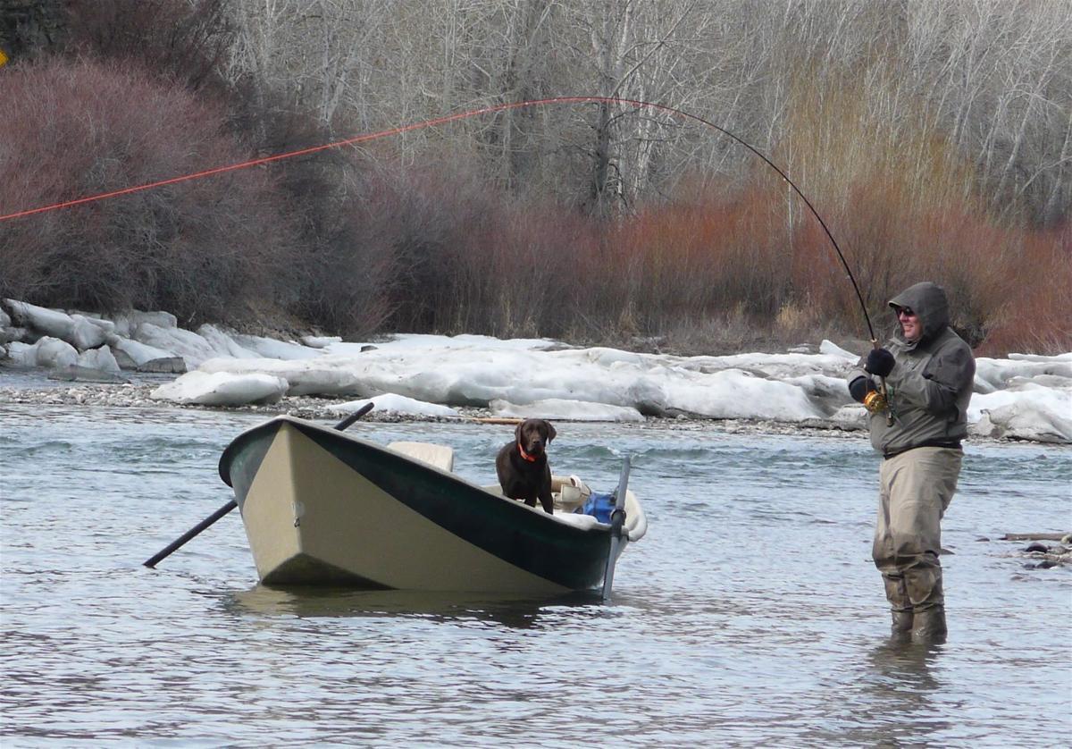upper salmon