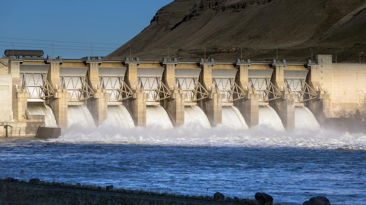 Lower Monumental Dam spillway