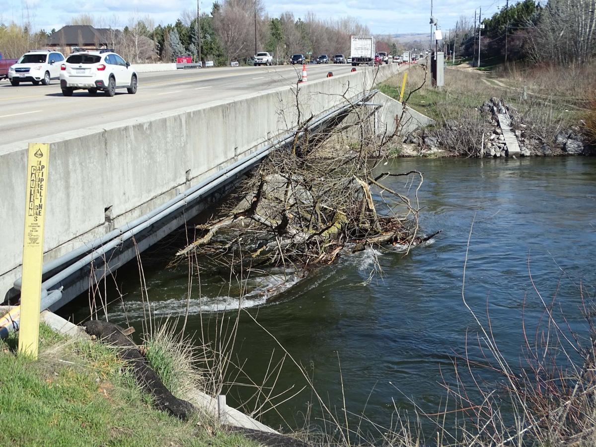 Boise Flood 1