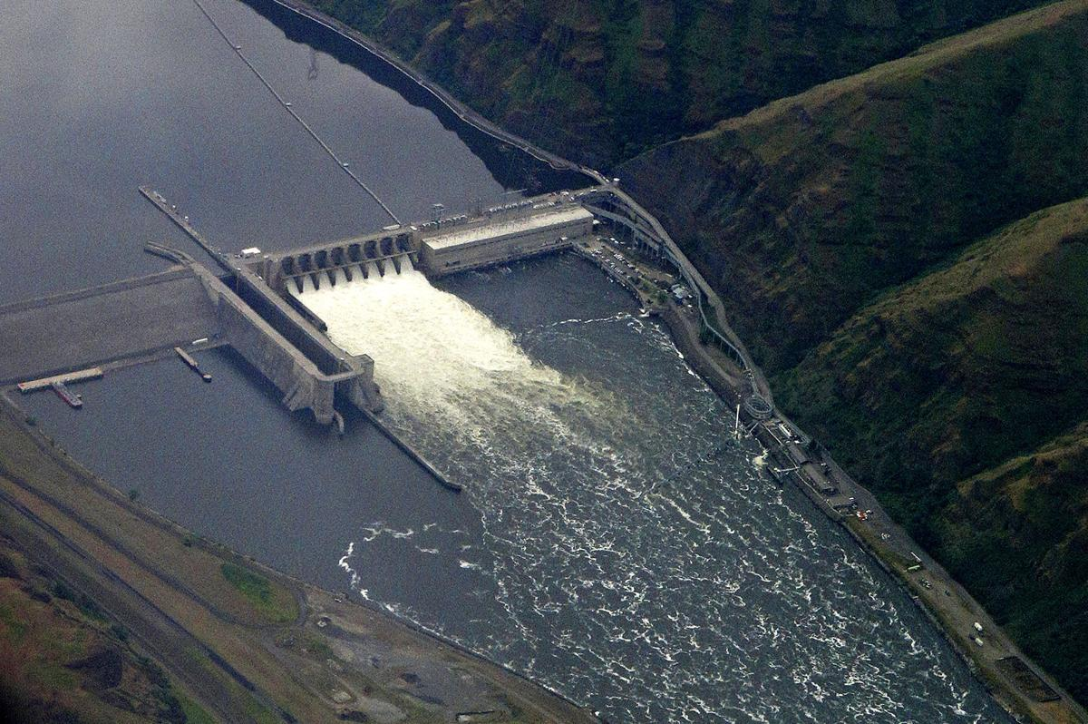 Snake River dams won't be removed to save salmon