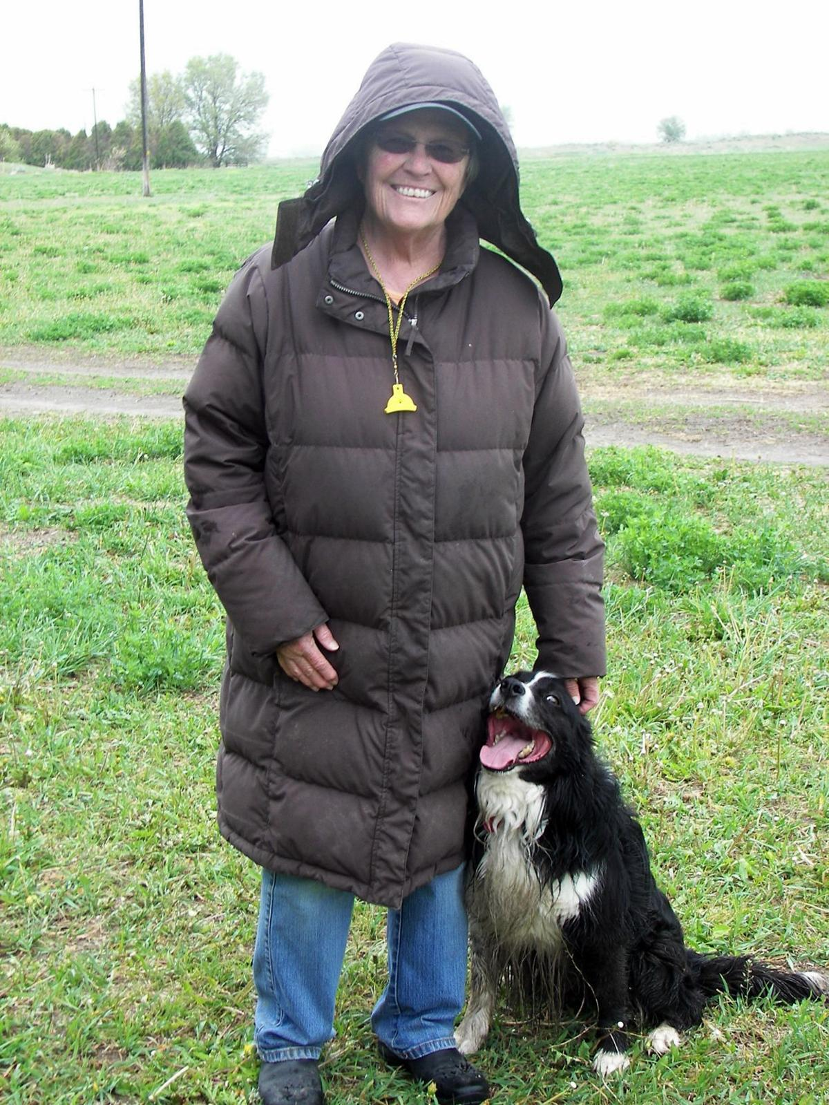 Stock dogs come in handy on the ranch | News | postregister com