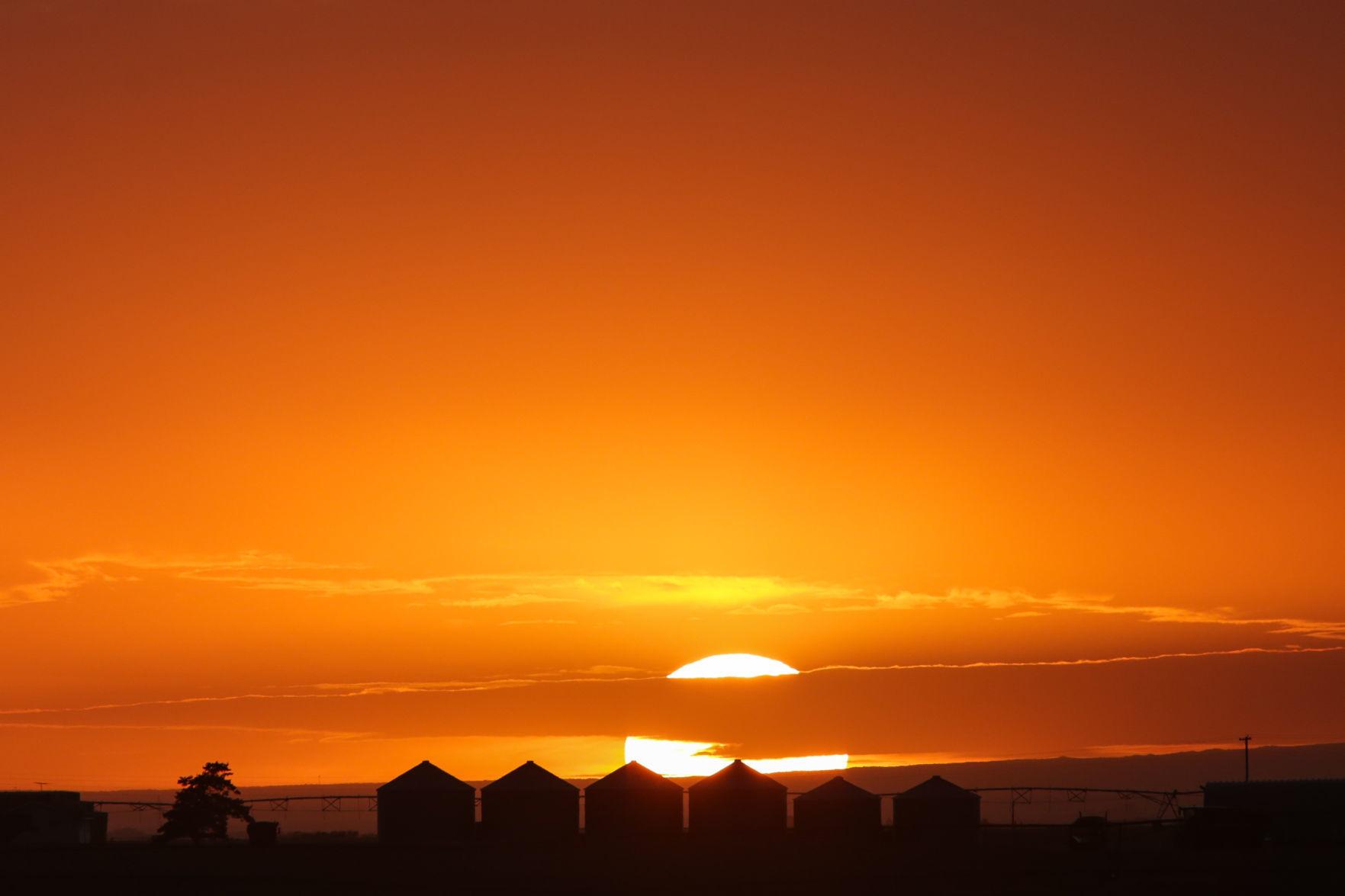 Sunrise by ryan bingham online dating