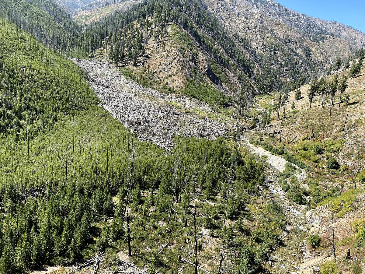 Debris flows help fish in Frank, Selway wilderness areas