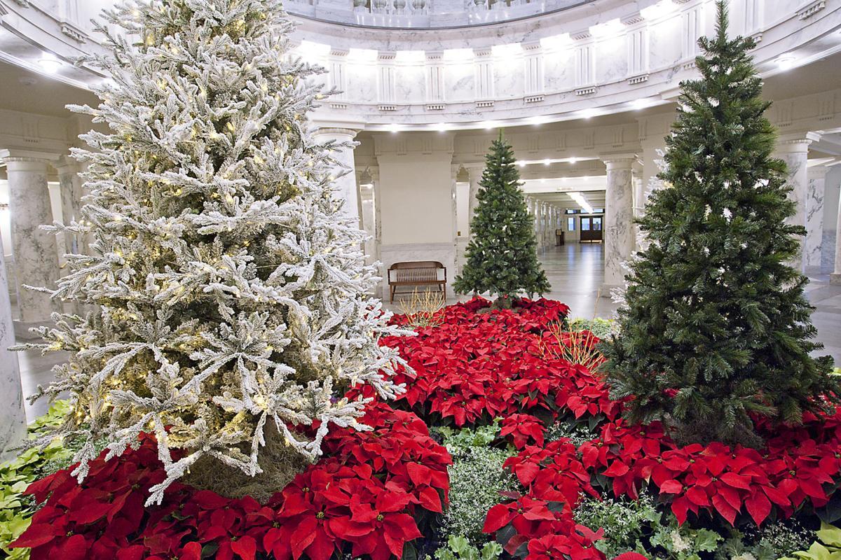 Capital Christmas Decor