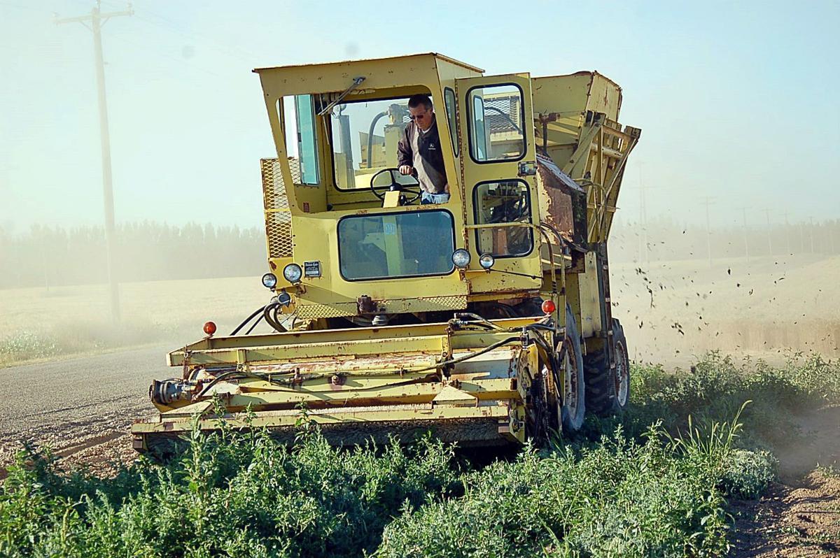 Pantry harvesting