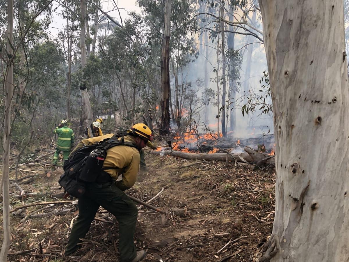 Idaho S Blm Firefighters Return From Australia Fire Relief Local News Postregister Com