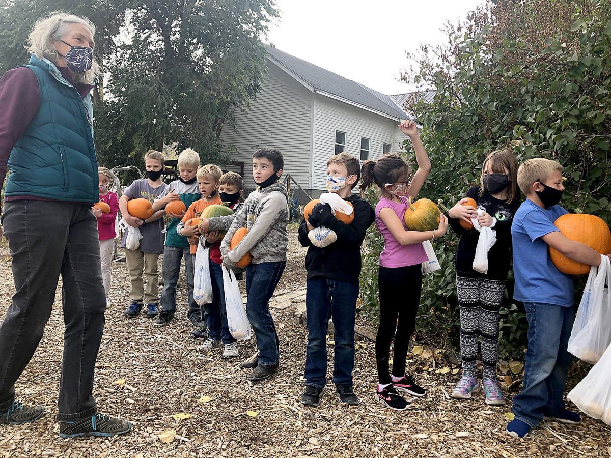 pumpkin story- line 10.21.jpg
