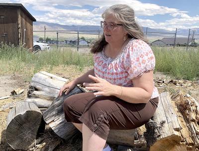 wood lot story- julie 7.22.jpg