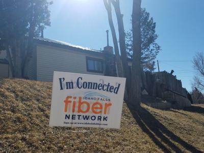 IF Fiber