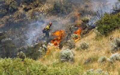 Wildfires-Firefighter Workforce