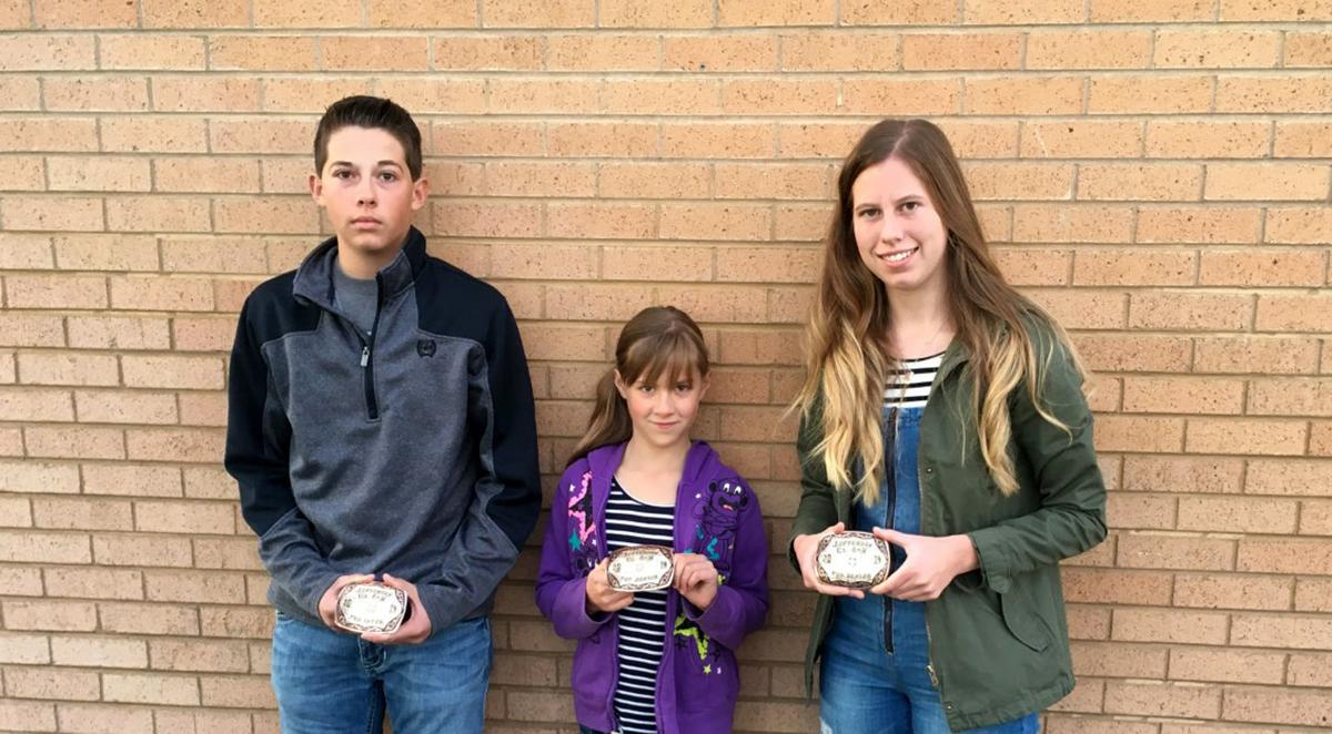 4-H awards announced for Rigby and Mud Lake