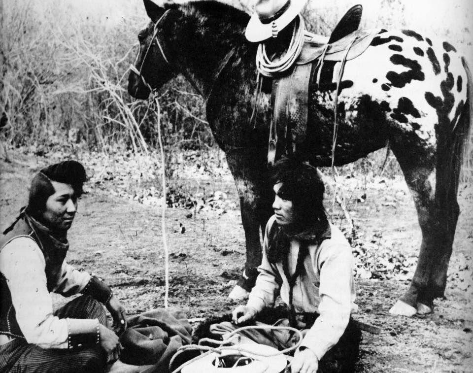 Appaloosa Horses Gave Nez Perce Advantage Over Us Cavalry Horses Postregister Com