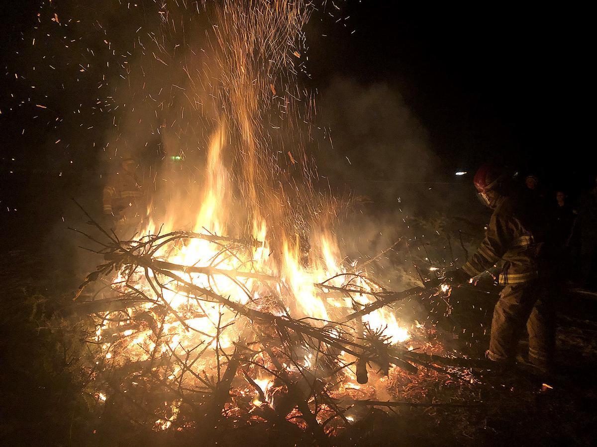 tree fire story- fireman 1.15.jpg