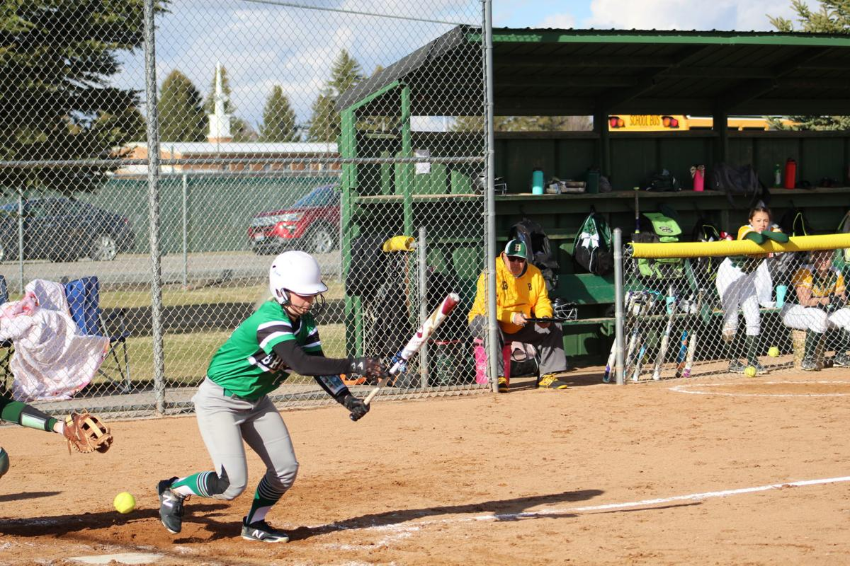 Lady Broncos fall to Idaho Falls Tigers