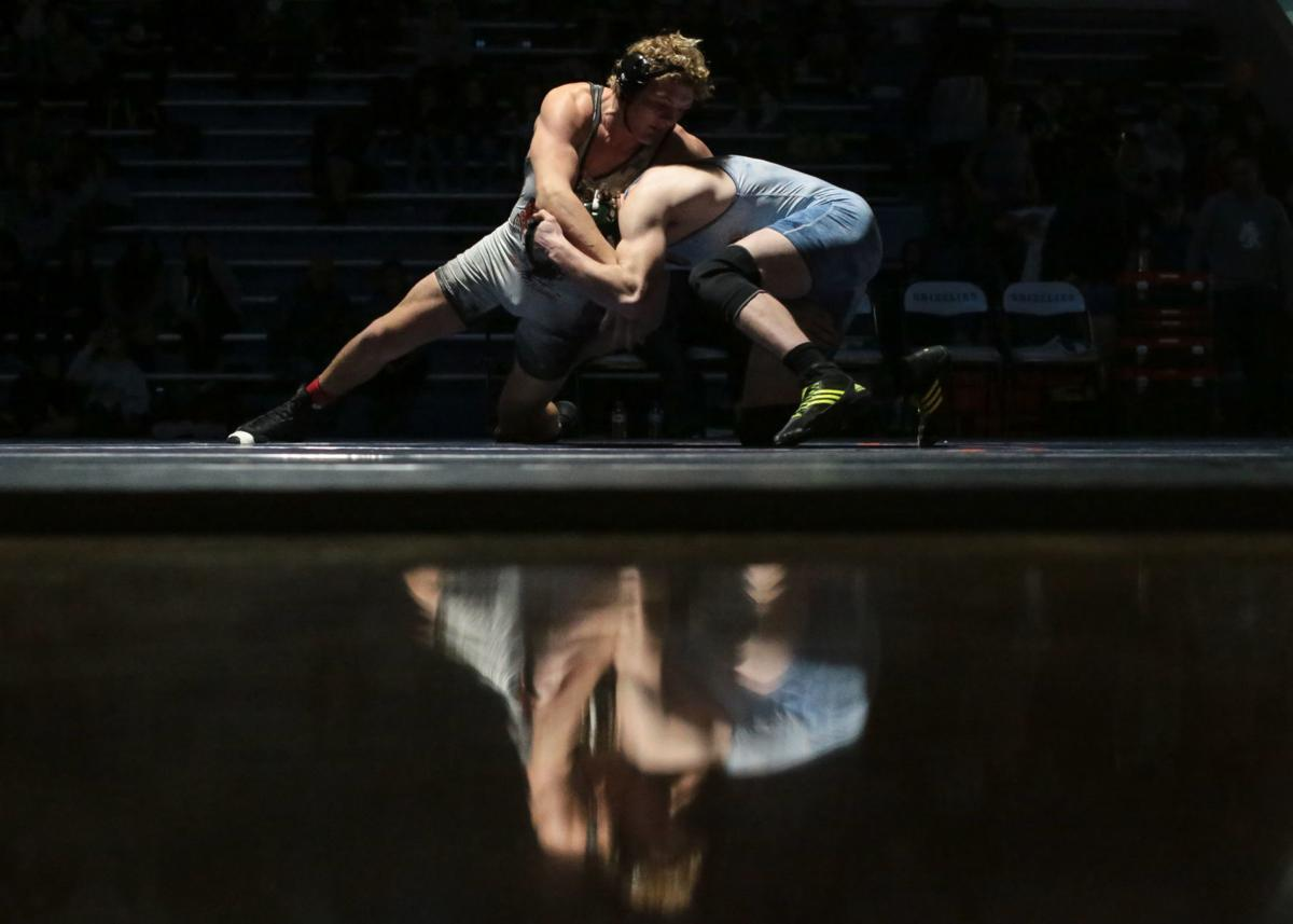 Hobbs, Copley shine at Tiger-Grizz wrestling championships