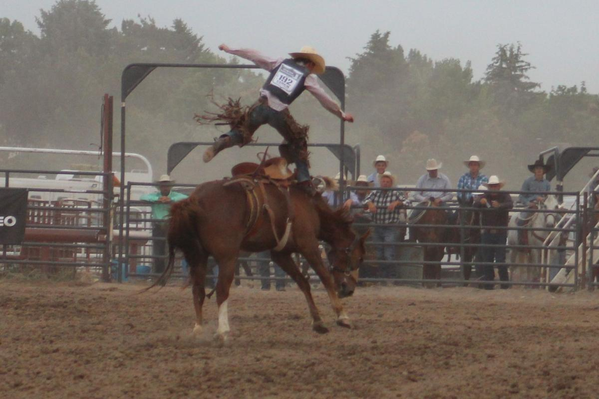 Saddle Bronc posts first go-round results