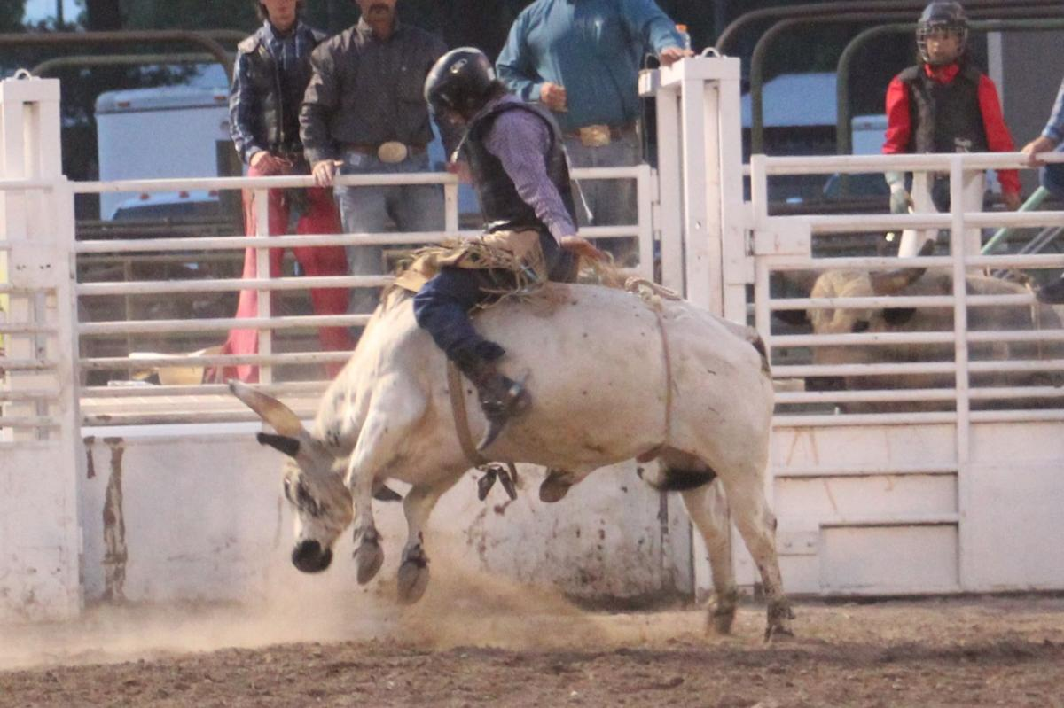 Bull riding comes down to final ride to determine champion