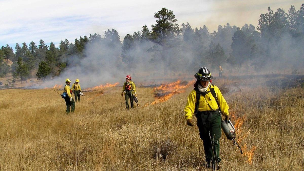 CONNELLY: LANDFIRE an important conservation tool