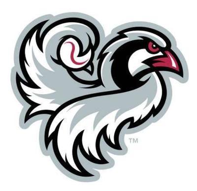 Chukars logo