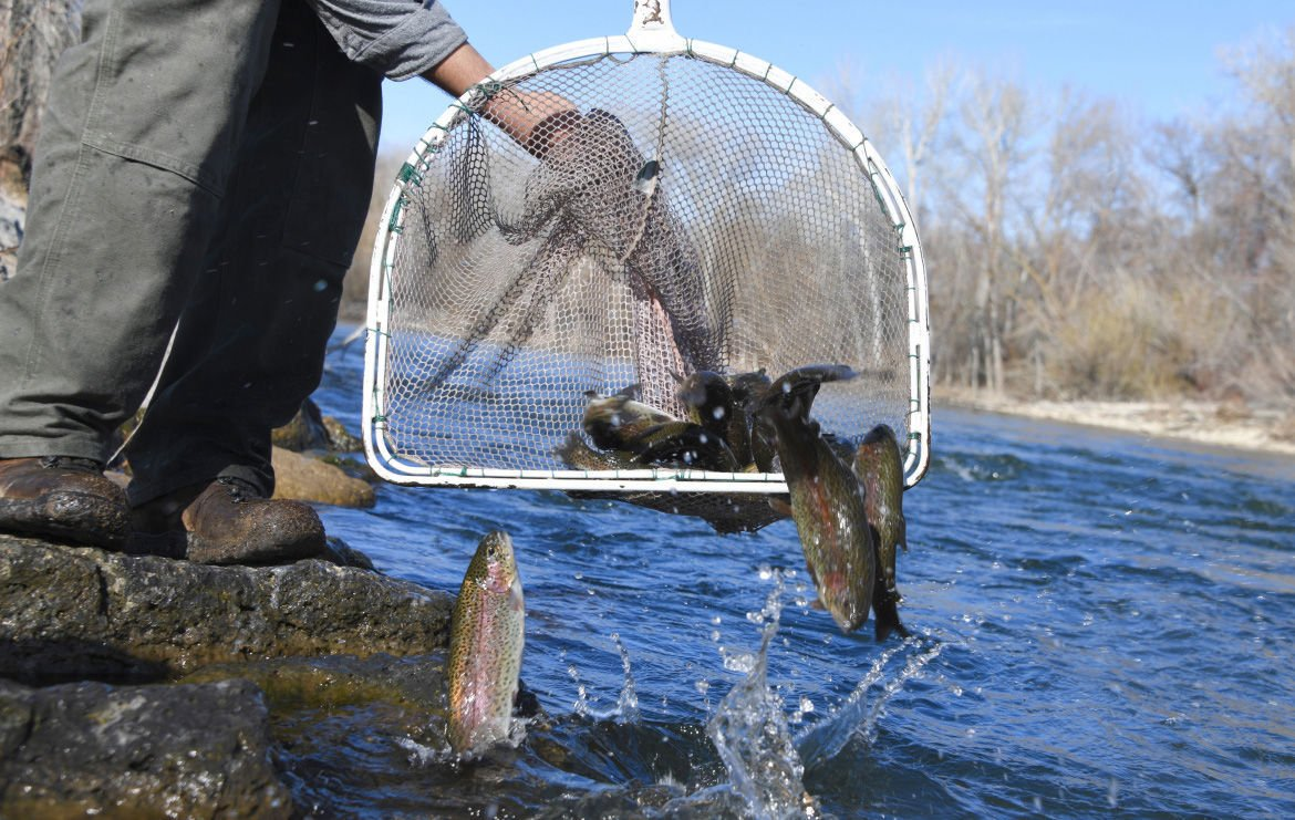 Fish stocking continues around Idaho