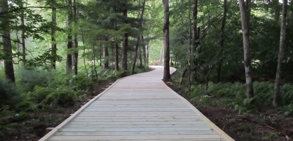 Rush Pond trail