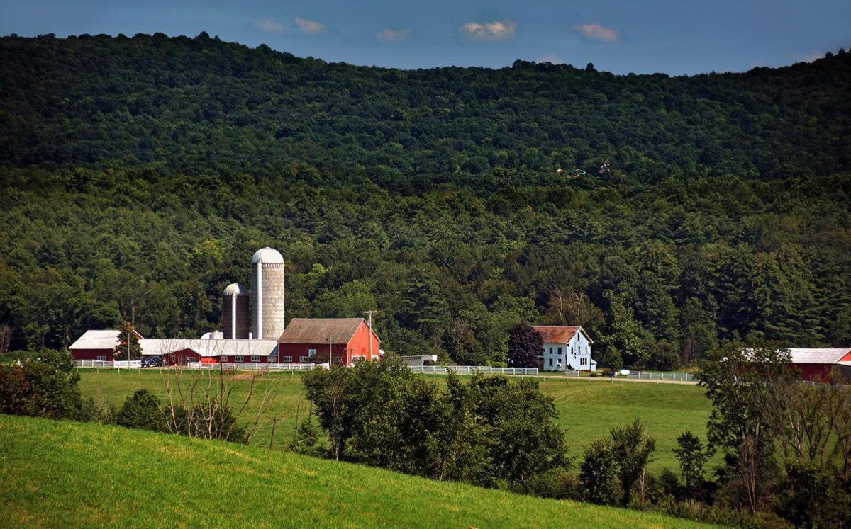 Washington County farms