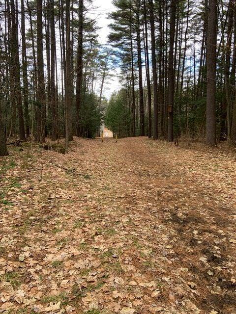 Cole's Woods