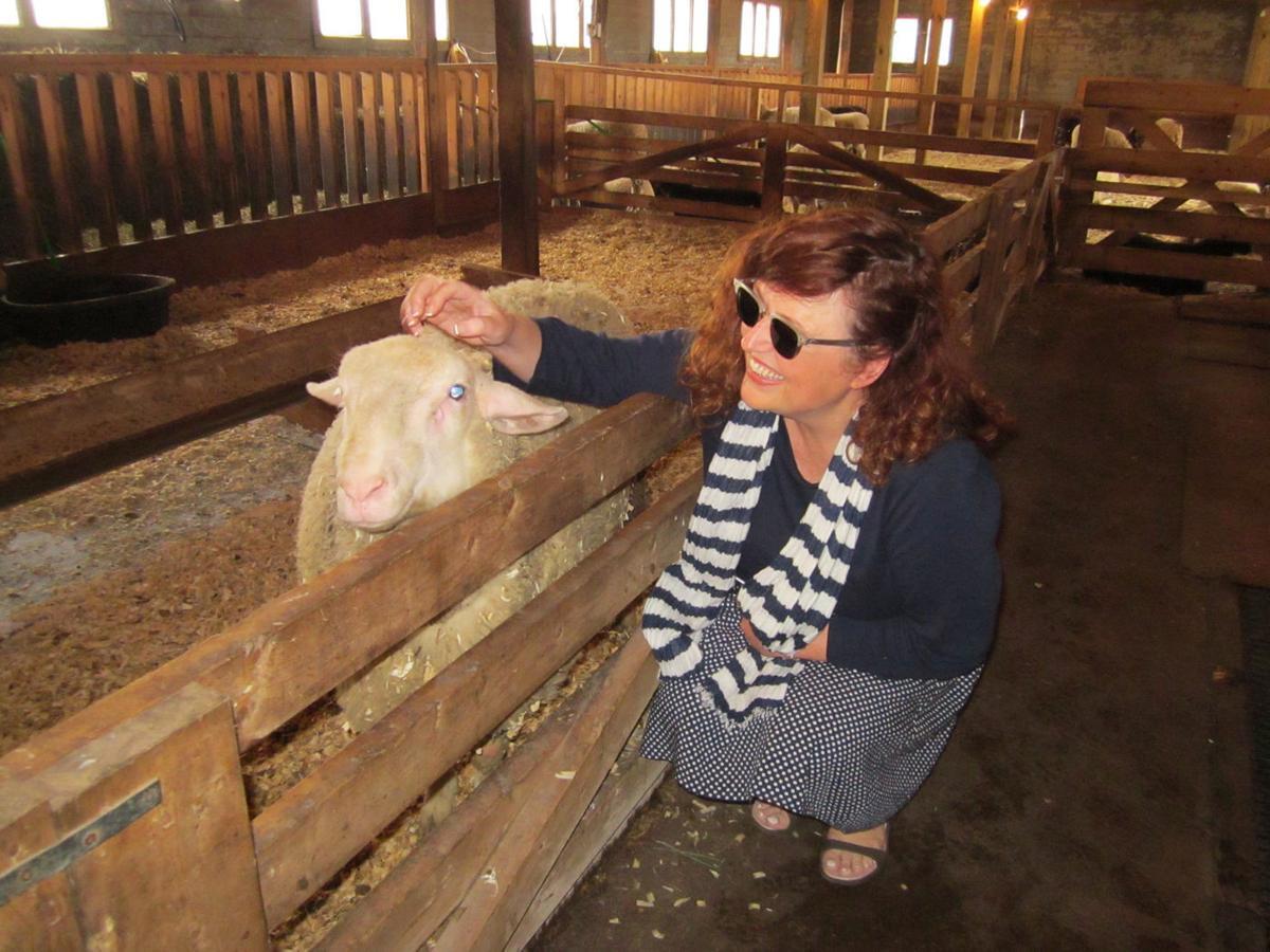 Dancing Ewe Farm