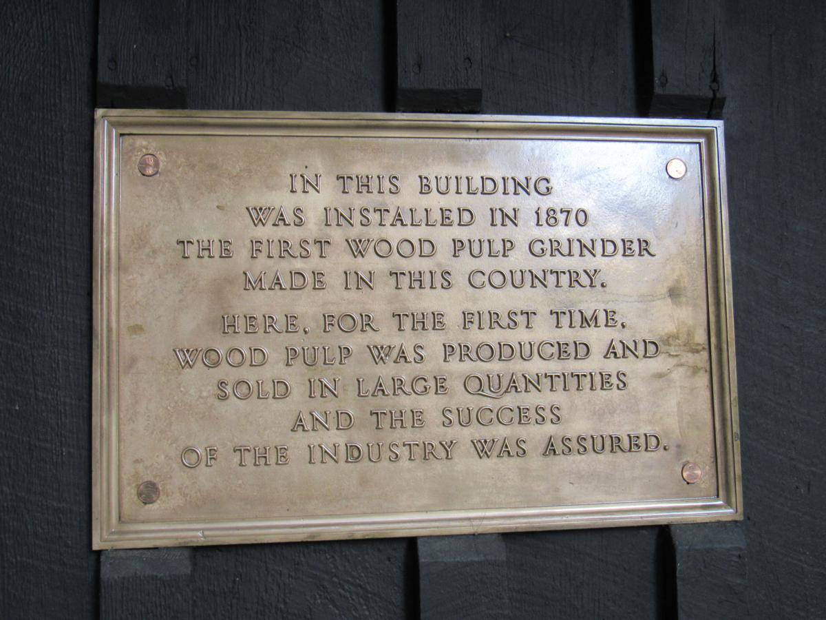 Pulp plaque