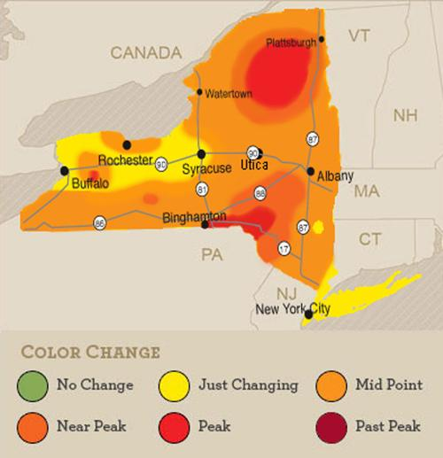 Fall foliage map | | poststar.com on canada vegetation map, canada smoke map, canada snow map, canada forest map, canada soil map, canada white map, canada weather map, canada landscape map, canada water map, canada animals map, canada blank map, canada tropical map, canada hardiness map, canada beach map, canada green map, canada terrain map, canada fall map, canada fire map, canada geological features map, canada mountains map,