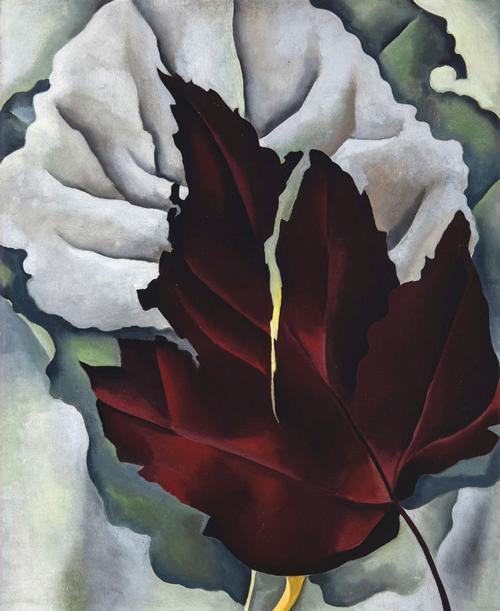 'Pattern of Leaves'