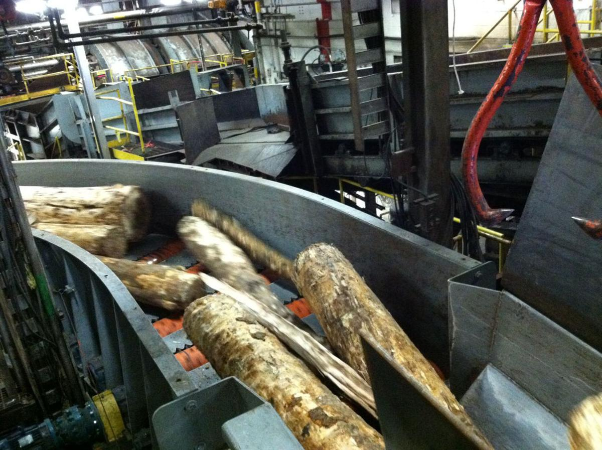 Logs at Finch Paper