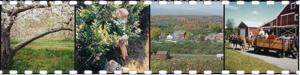 Hicks Orchard 2_collage.jpg