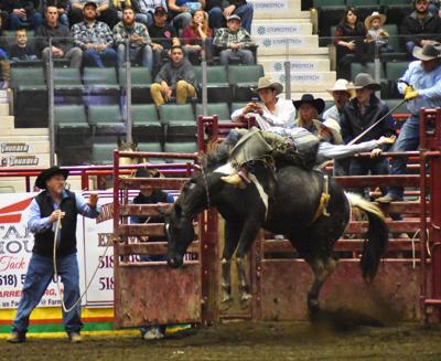 Adirondack Stampede Rodeo